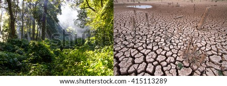 Climate change, Compare image between very Abundance green forest and very arid land - stock photo