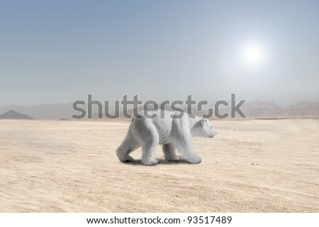 climate change global warming polar bear in the desert - stock photo