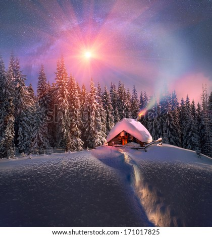 Climbing to tourist wild alpine mountain to an abandoned cabin-in order to illuminate the snow-covered spruce canopy during new, sunrise, sunset, to see the first star of Christmas in the Carpathians. - stock photo