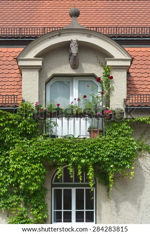 Climbing Vines of Ivy on a House with Horse Head and Flowers - stock photo