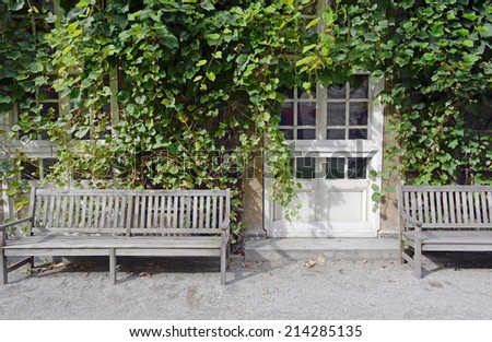Climbing Vines of Ivy on a House with Wooden Bench - stock photo