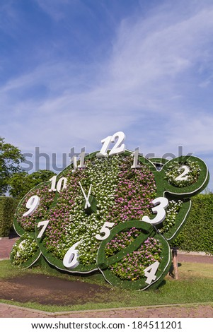 Clock design with flower in the park and blue sky background - stock photo
