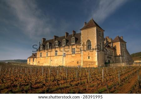 Clos de Vougeot, Burgundy, France (HDR image) - stock photo