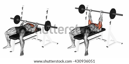 Bench Press Stock Images, Royalty-Free Images & Vectors | Shutterstock