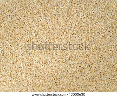 Close shot of dried sesame seeds, food background - stock photo