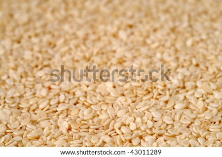 Close shot of dried sesame seeds, food background, shallow focus - stock photo