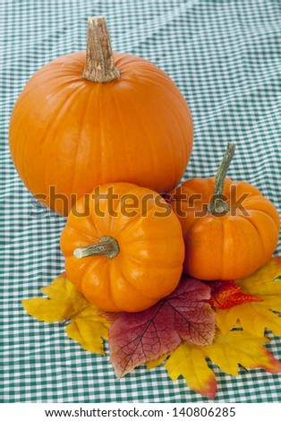 Close shot of 3 pumpkins on a plaid table cloth.