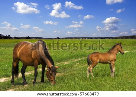 close to mother - stock photo