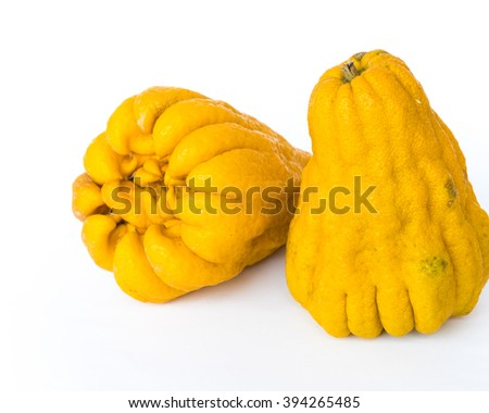 Close-up a fully ripe Buddha's hand fruit (or Hand of Buddha, Fingered citron fruit, Citrus medica) isolated on white background.This exotic Asian fruit is segmented into finger-like section.Copyspace