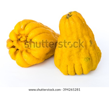 Close-up a ripe Buddha's hand fruit (or Hand of Buddha, Fingered citron fruit, Citrus medica) isolated on white background. A fragrant citron variety whose fruit is segmented into finger-like sections