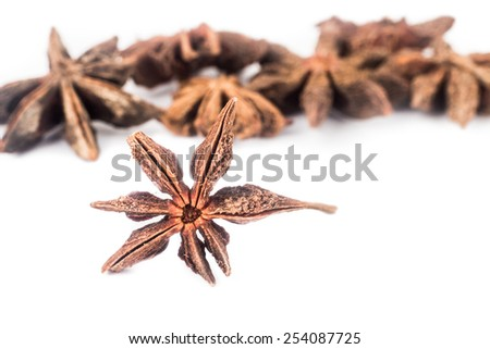 Close up and selective focus on one piece of Star Anise at the foreground - stock photo