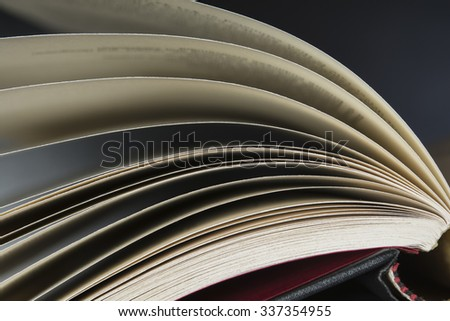 Close up at the pages of an open book - stock photo