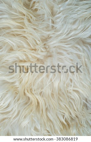 Close up at white fur fabric texture background. - stock photo