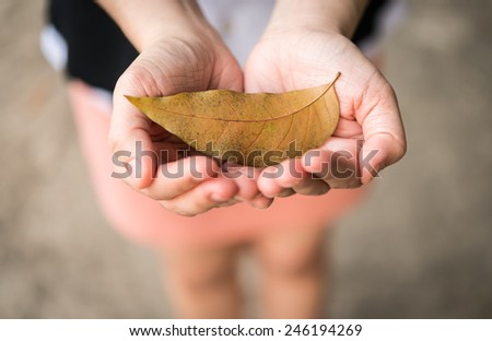 Close up autumn leaves in girl hands - stock photo