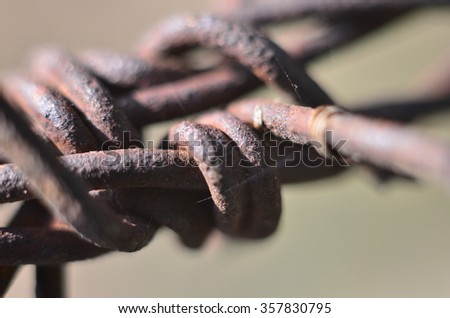 Close-up Barbed Wire