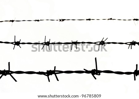 close up Barbed wire Fence on white background - stock photo