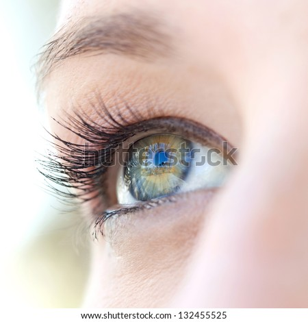 Close up beauty portrait of a young caucasian healthy woman eye looking up with lush and long eyelashes.