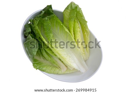 Close up Clean Washed Fresh Healthy Romaine Lettuce on White Bowl, Isolated on White Bowl - stock photo