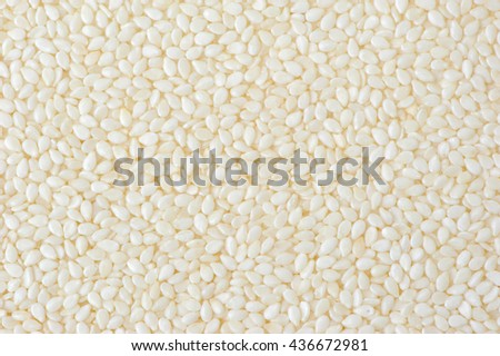 Close up clean White sesame seed - stock photo