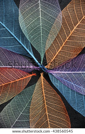 Close up colorful dried leaves background - stock photo