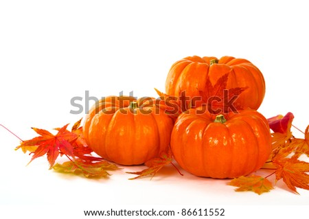 Close up composition of pumpkins and leaves on the table. - stock photo