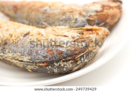 Close up deep fried tuna or mackerel fishes on white ceramic plate for food background  - stock photo