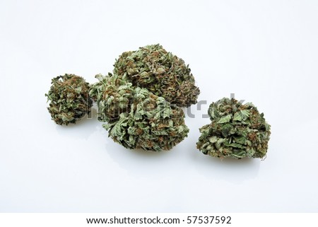 Close-up detail of medical marijuana bud - stock photo