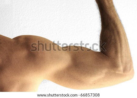 Close up detail of the arm of a man showing bicep - stock photo