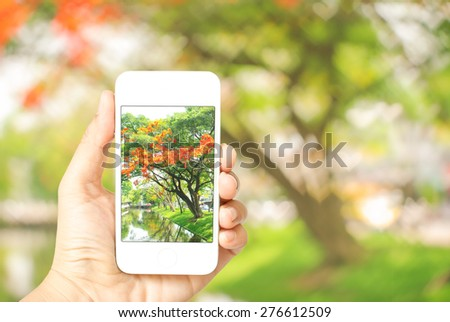 Close up detail view of a tourist woman hand holding a smartphone , taking picture of  beautiful scene of nature. Heart-shaped bokeh defocused background. - stock photo