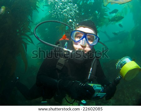 Close Up Diver in the Kelp in Catalina - stock photo