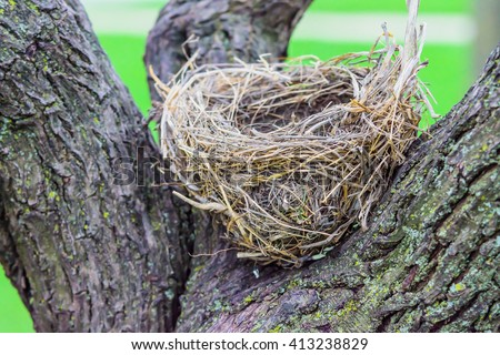 Clipart Illustration of an Empty Bird Nest Nestled In The