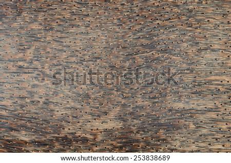 close up exotic wood background - stock photo