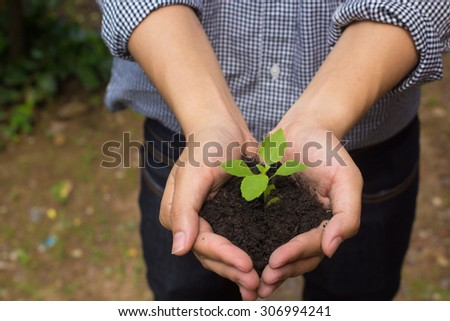 close up  farmer man hands couple holding a little growing plant in palm:Safe/save the world life concept,ecology system concept.selective focus.Global carbon emissions:developing clean bio conceptual - stock photo