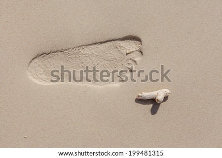 Close-up footprint on the beach with little coral, summer vacation - stock photo