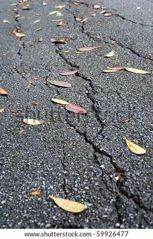 Close up for the crevasse road surface with the leaf fall - stock photo