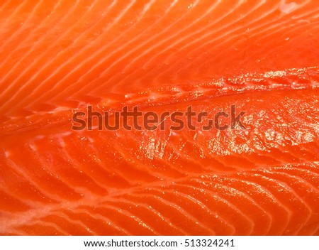 Close up fresh salmon meat texture. Raw and very fresh meat.