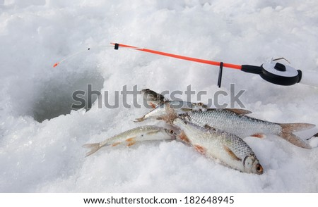 Toima stock photos royalty free images vectors for Frozen fishing pole
