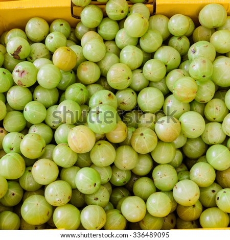 Close-up, full frame view group of fresh ripe Indian gooseberries in in a box fruit stall at Little India Singapore. The dessert cultivars as luscious as the best apple, strawberry or grape - stock photo