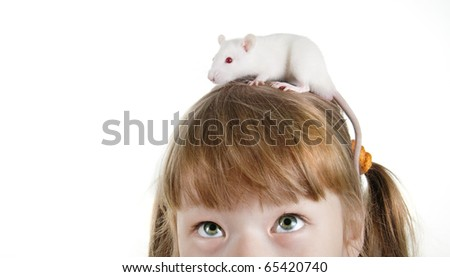 close-up girl with a rat on her head - stock photo