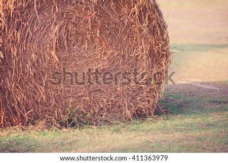 Close up Hay bales on the field.Sunset time. - stock photo
