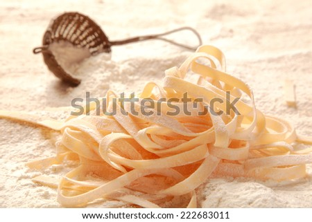 Close up Homemade Fresh Egg Italian Pasta on Table Filled with Flour - stock photo