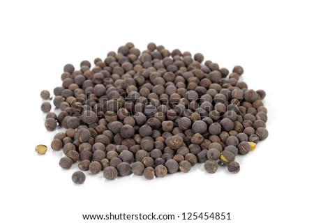Close-up image of a pile of black mustard seeds isolated on a white background - stock photo