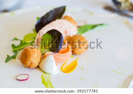 Close up image of a Salmon Pate dish served with salads in a gourmet restaurant.  - stock photo