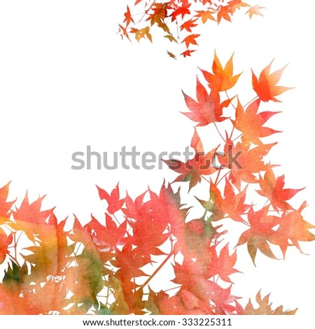 Close up image of maple leaves on white background. Hand painted watercolor texture with photographic leaves. Fall background image.