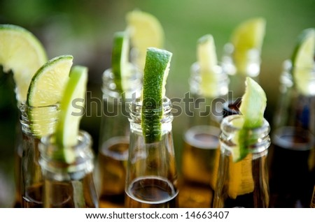 Close up image of multiple beer bottles with limes inserted