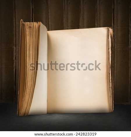 Close up image of old opened book with blank pages - stock photo