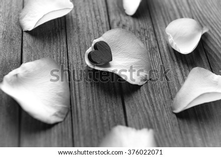 Close-up image of rose petals on a wooden background. Black and white photo