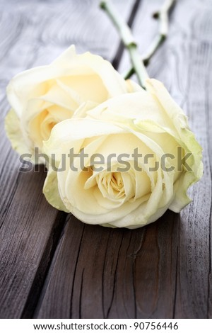 Close up image of yellow roses on a wooden background with copy space. - stock photo