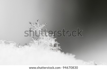 Close up, macro of snow with crystals in good view - stock photo
