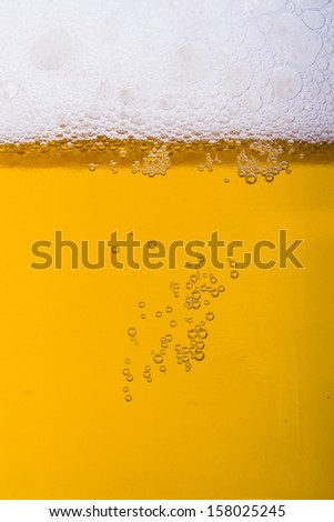 Close up, macro view of droplets, beer bubbles.